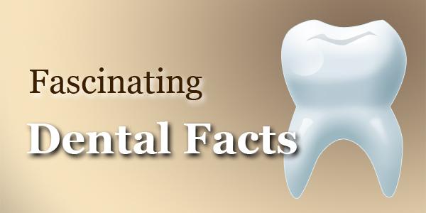 Περίεργα και ενδιαφέροντα που δεν ξέρετε για τα δόντια!